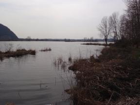 La Palude nella parte meridionale del lago