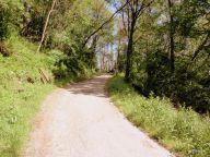 strada che porta all'eremo