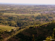 Colline e campi coltivati
