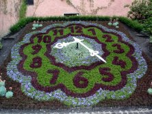 ZittauOrologio floreale Bastione del Macellaio