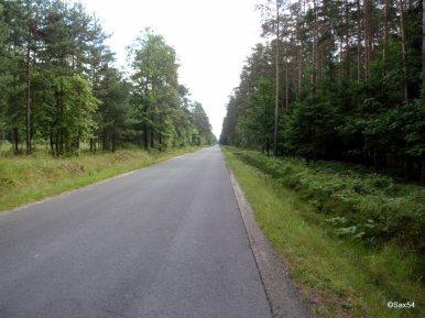 Verso la Polonia Torun