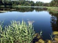 Polonia Lago Suwalki
