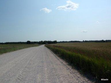 Lituania al ritorno P 38 80 Km.di Sterrato